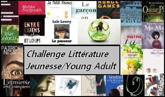 http://bazar-de-la-litterature.cowblog.fr/images/AutreTer/challengeya.jpg