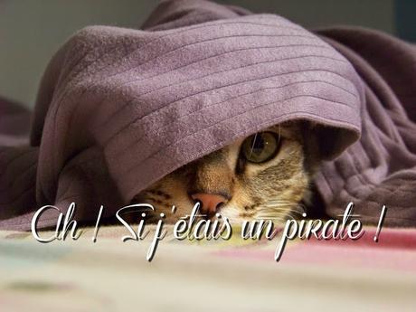 ⛵ Ah ! Si j'étais un pirate ! Juin 2015