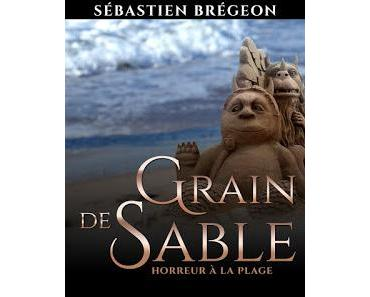 Grain de Sable- Sébastien Brégeon