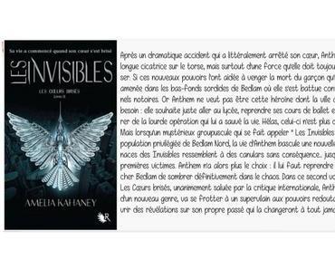 Les Invisibles | Amelia Kahaney (Les cœurs brisés #2)