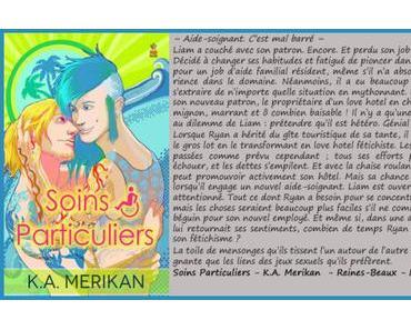 Soins Particulier #1 – K.A. Merikan