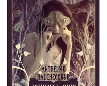 Journal d'un marchand de rêves (Anthelme Hauchecorne)