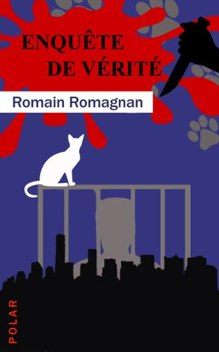 Enquête de vérité (Romain Romagnan)