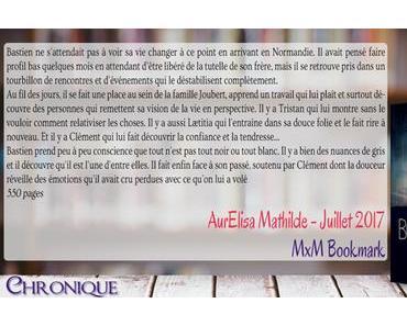 Borderline #2 – Douceur, tendresse et autres complications – AurElisa Mathilde