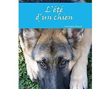 « L'été d'un chien » de Cassandra Bouclé