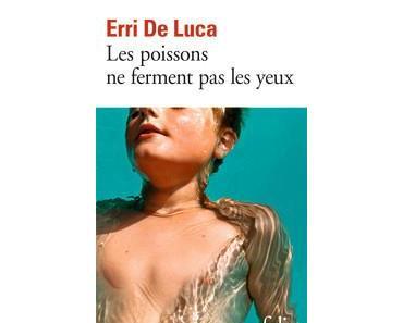 Erri De Luca – Les poissons ne ferment pas les yeux ***