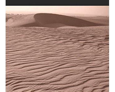 Le tambour des sables de Maamar Rekaiba