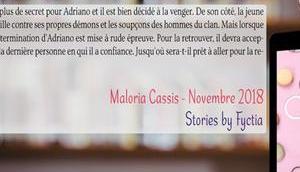 cake Maloria Cassis