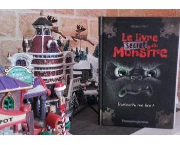Le livre secret du Monstre (Magnus Myst)