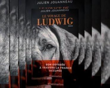 Le Voyage de Ludwig de Julien Jouanneau