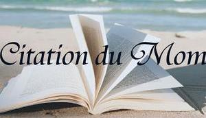 Citation Moment