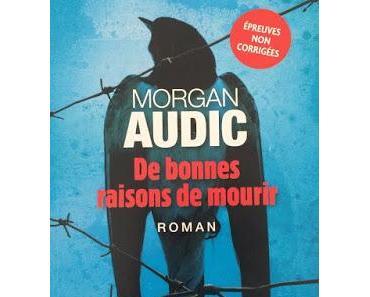 De bonnes raisons de mourir - Morgan Audig