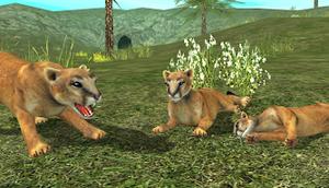 Télécharger Wild Cougar (Astuce)
