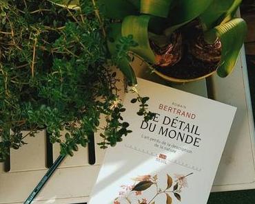 Le détail du mondede Romain Bertrand (Seuil UH)