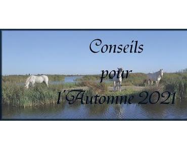 #18 Conseils pour l'Automne 2021
