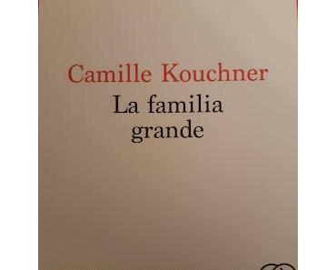 La familia grande - Camille Kouchner (entre **** et *****)