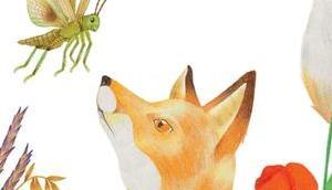 L'enfant renard
